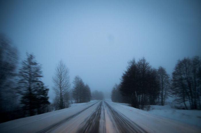 Bare Tree Blue Country Road Diminishing Perspective Fog Foggy Morning Landscape Misty Morning Fog... Morning Light Morning Mist Nature Road Season  Sky Snow The Way Forward Tranquil Scene Weather Windshield Windshield Shots Winter Winter Road