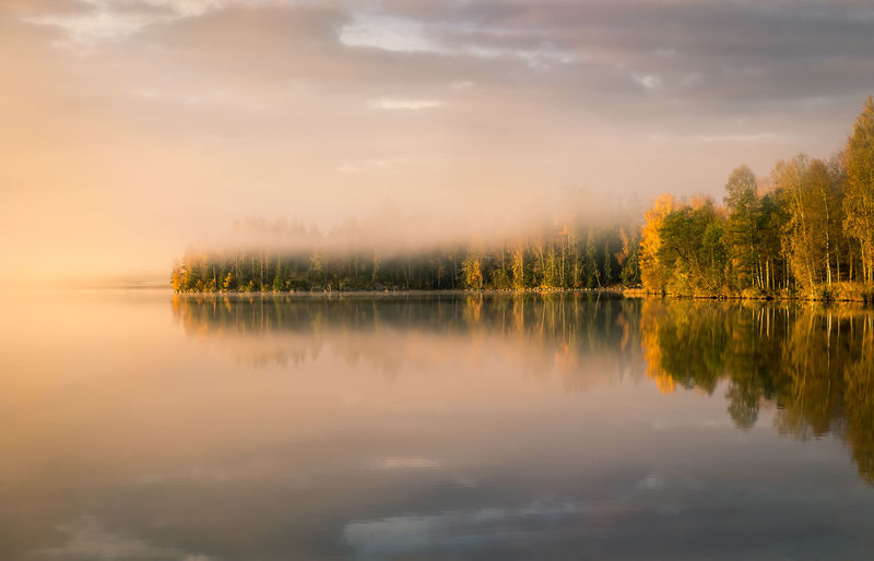 Morning reflections Atmosphere Atmospheric Mood Autumn Beauty In Nature Fall Colors Forest Idyllic Lake Landscape Morning Light Nature No People Outdoors Peaceful Reflection Reflections Scenics Sky Standing Water Sunrise Symmetry Tranquility Tree Trees Water EyeEmNewHere