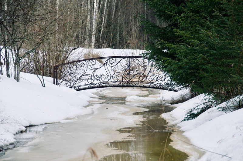 March Architecture Forest Forest Photography Forest Track Deep Snow Spring Springtime Bridge Water Tree Winter Snow Sky Stream Arch Bridge Snow Covered
