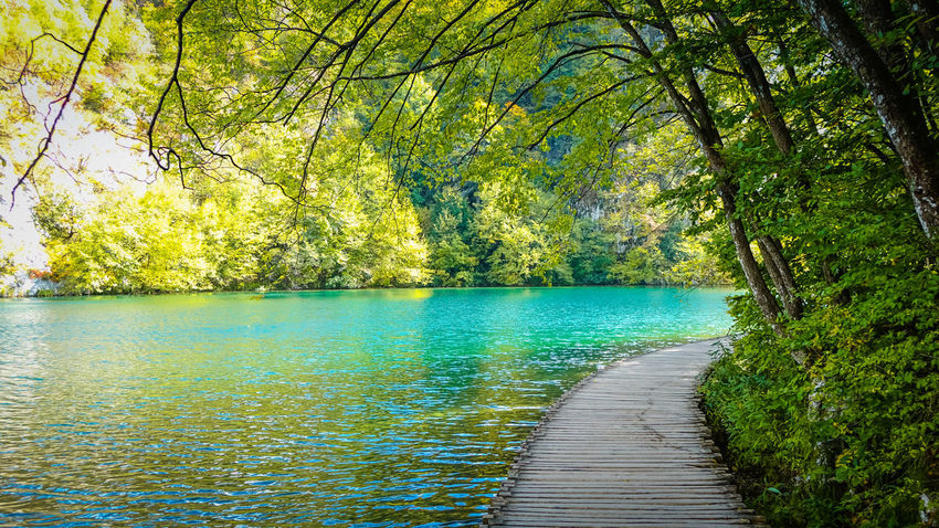 Wooden pathway along the emerald green water at Plitvice Lakes National Park Green National Park Natural Nature Nature Photography Plitvice Lakes National Park Wood Beauty In Nature Emerald Emerald Lake Emeraldgreen Forest Greenery Idyllic Lake Landscape No People Non-urban Scene Outdoors Park Pathway Plitvice National Park Tranquil Scene Tranquility Water