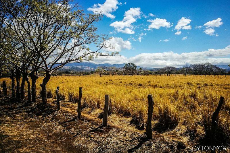 En Sardinal de Puntarenas, Costa Rica. Costarica Puravida Landscape Overland Travel Viajar Discover