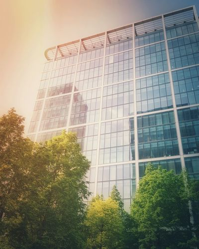 The Architect - 2016 EyeEm Awards Photooftheday Street Photography City Uk City Street Urban Building Building Exterior Atanas Bezov London Photographer Architectural Detail Nature Nature Photography Nature_collection Tree Park Sky Skyscraper Architecture Glass Window
