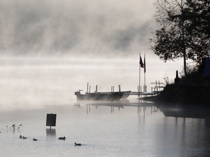 A dream scape morning sunrise Fog On Lake Fog Foggy Morning Scenics Beauty In Nature Waterfront No People Sky Outdoors Nature Day Nautical Vessel Sea Water Lake Steam Rising Cold Morning ✌ Ducks Boat Flag Black And White