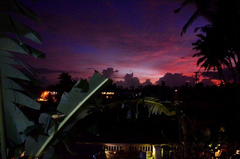 Sunset from my hostel in Ubud Hostel Hostel Life Bali Ubud INDONESIA Backpacking