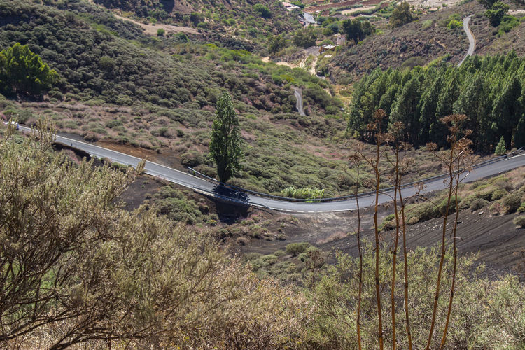 Beautiful Nature Canary Islands Curve Gran Canaria Gran Canary Island Nature Perspectives On Nature Landscape Landscapes Street