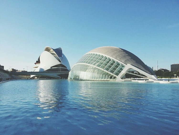 Architecturephotography Architecturelovers Architectural Detail Architecture_collection Architecture Water Cityofartsandsciences City Of Arts And Sciences Of Valencia, Spain City Of Art And Science Oceanographic Valencia Oceanographic Valencia, Spain Valencia City