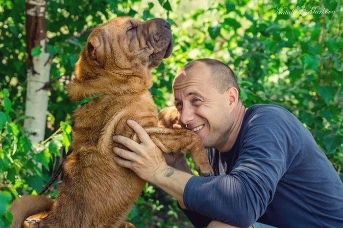 Snapshots Of Life I Love My Dog Dog Sharpei