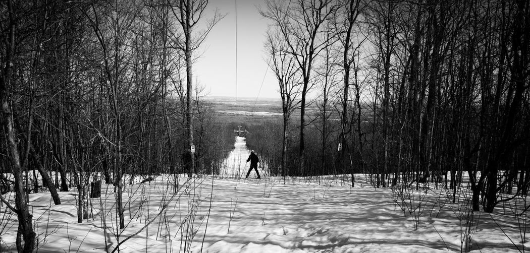Scenic Nordic Caves Collingwood Cross Country Skiing Winter Winter Sports Skiing ❄ Snow Tree Nature Weather Sky Outdoors