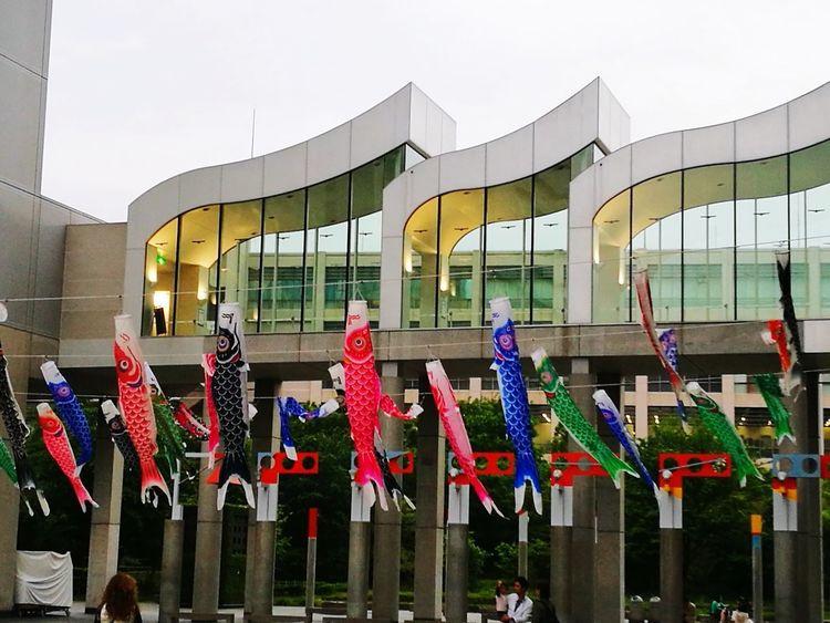 Multi Colored Architecture No People Outdoors Day Japantrip Osaka-shi,Japan Japanstreet Building Exterior Koi Carps