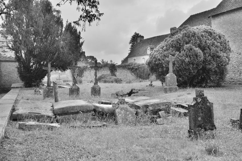 Black and White tombstones on a cemetery Architecture Built Structure Cemetery Day Field Grass Grave History Land Nature No People Outdoors Plant Religion Sky Stone The Past Tombstone Tree