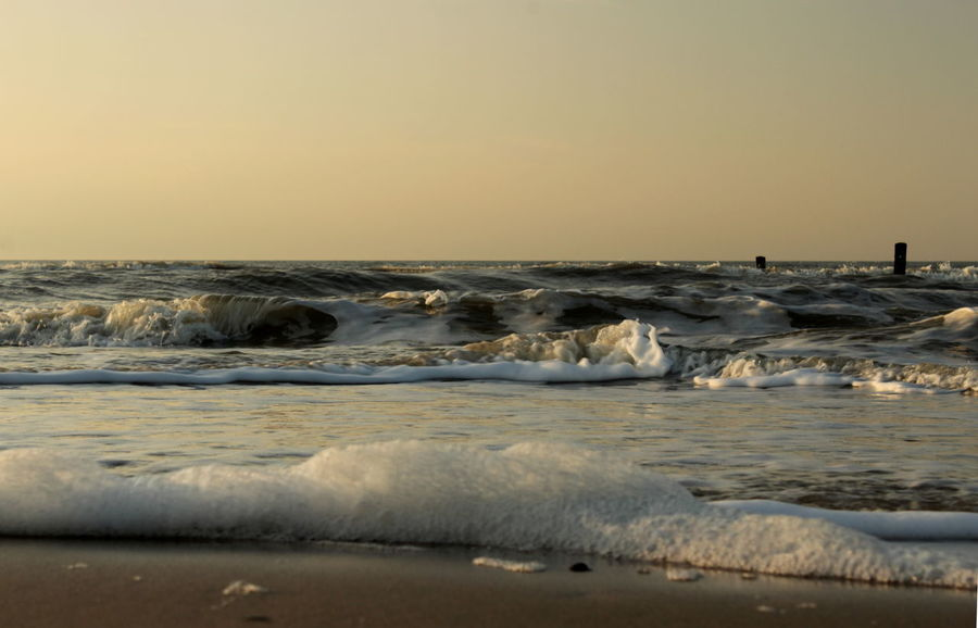 Frog Perspective Beach Bronze Color Flowing Water Foamy Waves Horizon Over Water Sunset Warm Light Wave Waves Close Up