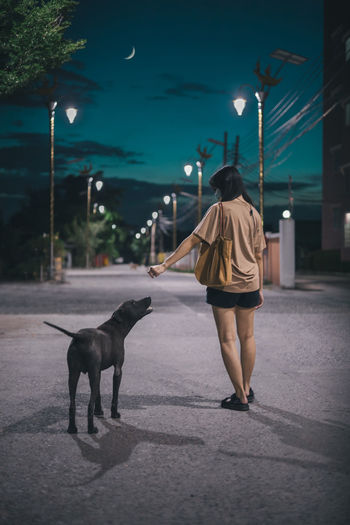 Rear view of woman walking with dog on street