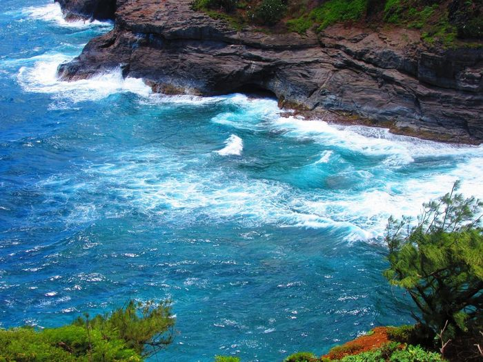Ocean Pacific Ocean Backgrounds Tree Water Sea Blue High Angle View Sky Turquoise Rock Formation Surf Natural Arch Coast Rocky Coastline Eroded Rock Geology Wave Flowing Water Crashing Tide Shore