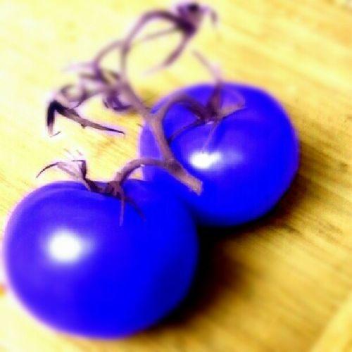 Blue tomatoes Photoadayjuly Myfavoritecolor Blue Neonveggies