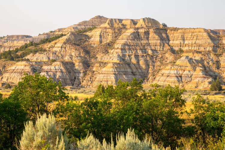 Badlands Beauty In Nature Day Landscape Nature No People Outdoors Scenics Sky Theodore Roosevelt National Park Tree