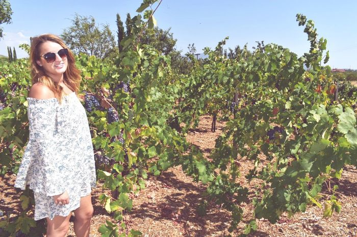 Breathing Space Winery EyeEm Selects Sunglasses Smiling Summer Happiness Young Adult Only Women Portrait Long Hair Standing Adult Outdoors Day Nature Rural Scene Young Women People Looking At Camera Adults Only Cheerful One Woman Only Vineyard Vines