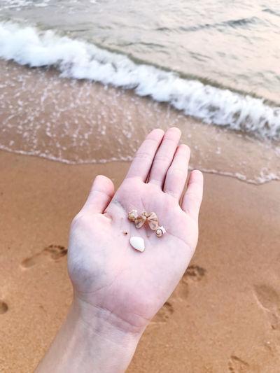 High angle view of hand on beach