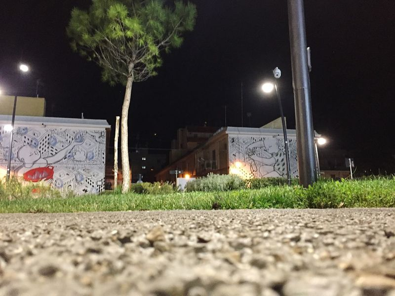 Street art Night Illuminated Lighting Equipment Grass No People Outdoors Moon Building Exterior Built Structure Architecture Tree Sky The Graphic City
