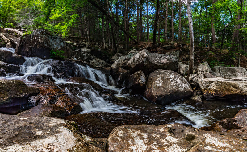 Beauty In Nature Day Forest Glendale Falls Landscape Middlefield, MA Nature No People Outdoors River Rock - Object Scenics Sky Stream - Flowing Water Tranquil Scene Tranquility Travel Destinations Tree Water Waterfall