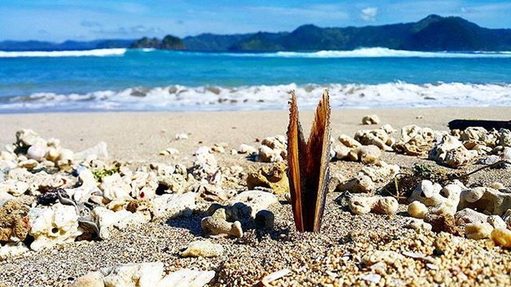 White sandy beach. Whitesandybeach Agushariantophotography Surfing Livingthedream Scubasurflombok