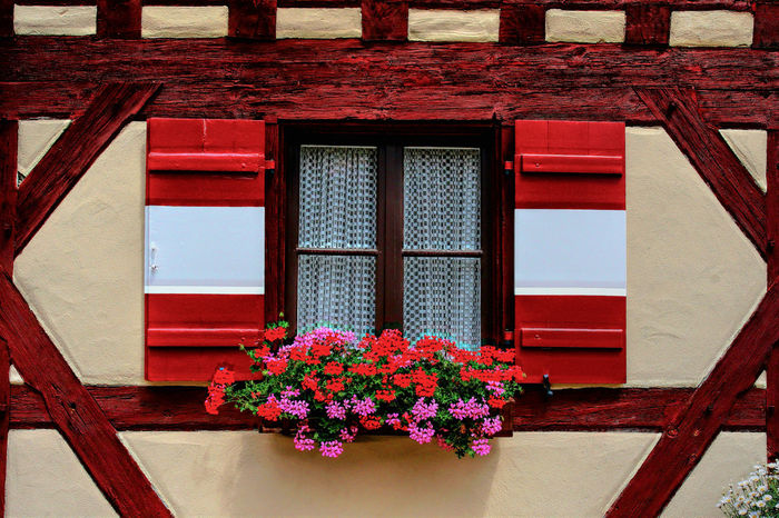 Wooden beams GERMANY🇩🇪DEUTSCHERLAND@ Wooden Shutters Architecture Building Exterior Built Structure Close-up Flower Nature No People Outdoors Plant Red Window Window Box Wooden Beams