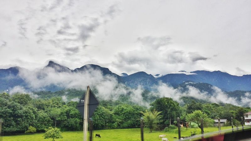 Nature Paradise Adventure Camera Naturaly & Perfect Errejota021 Braziliangirl Happiness Cloud - Sky Mountain Beauty In Nature Landscape Tree No People Sky Storm Cloud Forest Outdoors Day