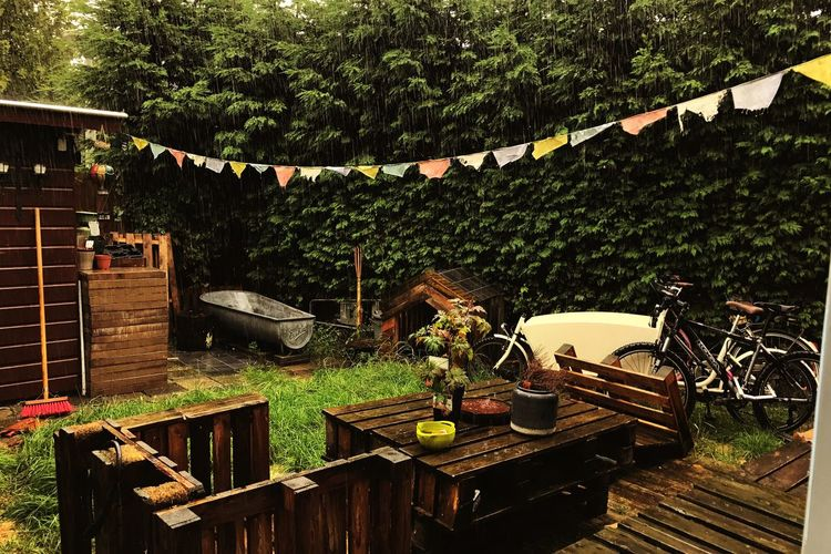 Table Outdoors Wood - Material Tree No People Day Architecture Nature Amsterdam Bicycle Koga Miyata Backyard Garden Rain Rainy Days Fall Summer Is Over Netherlands Real Life