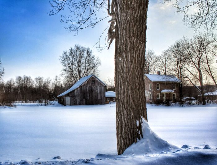 The Culture Of The Holidays 🎄 Christmas has passed, listening to winter at Harriet Tubman's home in Auburn, New York Snow Season  Winter Cold Temperature Weather Built Structure House Architecture Covering Building Exterior Tree Frozen Residential Structure Field Tree Trunk Bare Tree White Color Covered Sky Nature HarrietTubman
