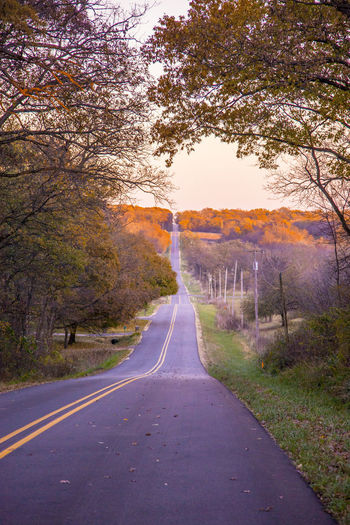 Farm MidWest Autumn Beauty In Nature Branch Day Landscape Nature No People Outdoors Road Scenics Sky The Way Forward Tranquil Scene Tranquility Transportation Tree