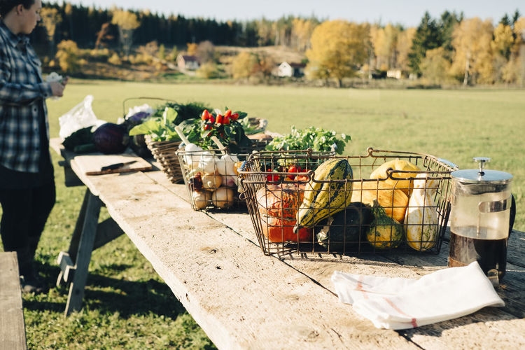 Man and vegetables in basket on field