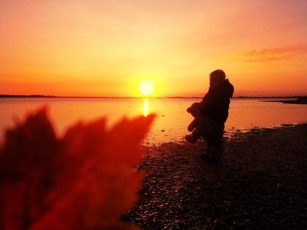 Red Leaves Autumn Boy Wonderful Teddy Bear Crimea Sunset Water Sky Sea Orange Color Beauty In Nature Beach Nature One Person Sun Horizon Over Water Real People Scenics - Nature Lifestyles