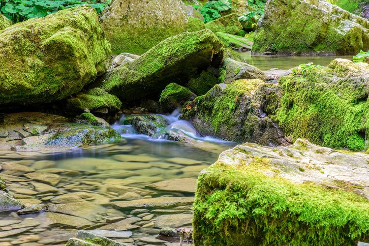 Silk water in nature Woods Long Exposure Taipana Campo Di Bonis Friuli Venezia Giulia Friuli Water Nature Rock - Object Moss River Day Beauty In Nature Outdoors No People Green Color Beach Riverbank Waterfall Scenics Tree