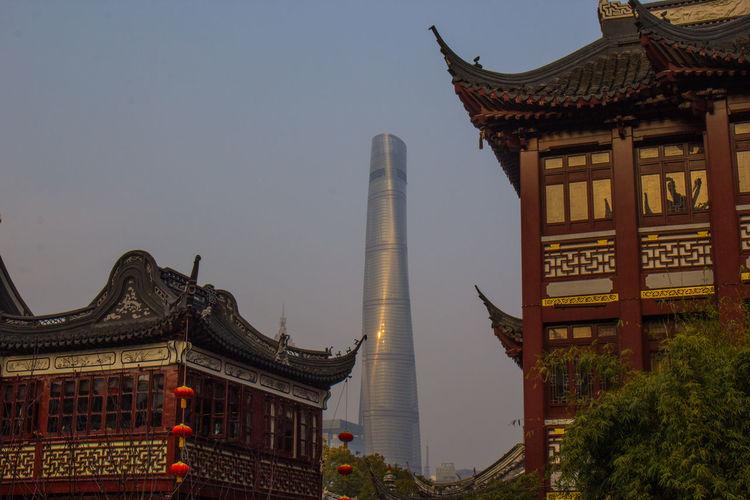 Blue Sky Building Shanghai Shanghai Tower Shanghai, China Skyscraper Springtime Yuyan Garden EyeEmNewHere EyeEmNewHere The Great Outdoors - 2017 EyeEm Awards