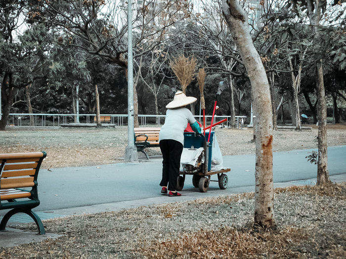Rear view of person in park