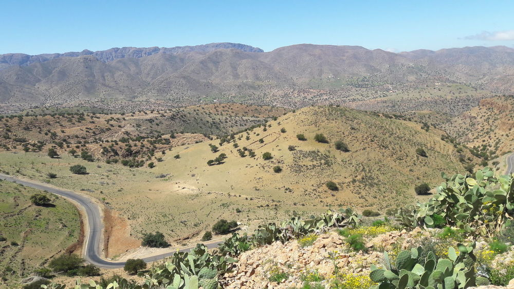 Countryside Tafraout Idaougnidif Morocco Argan Trees Nature Mountain Mountain Clear Sky Tree Sky Landscape Plant