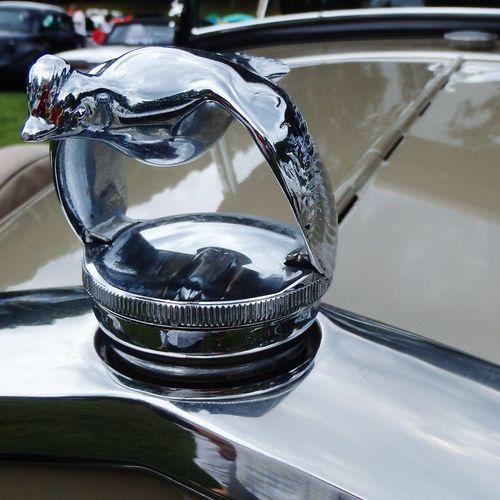 Hood ornament. Hoodornament Oldmachine Vintage Cars Classic Car Chrome Carshows Oldcars Cars