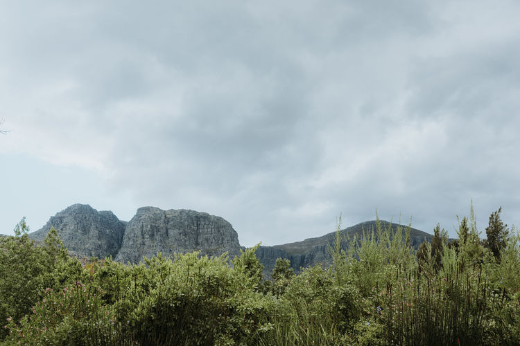Mountains and clouds Cape Town South Africa Travel Trees Clouds Landscape Mountains Sky