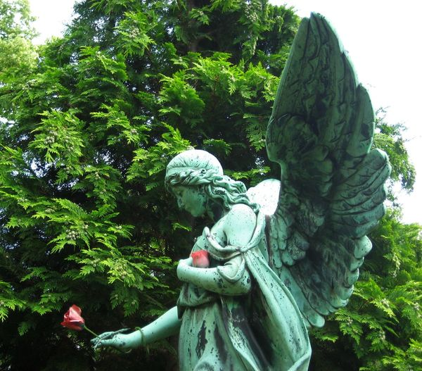 Angel AngelLove👼🏼 Art Carving - Craft Product Creativity Green Color Growth Heaven On Earth HEAVENONEARTH Heaven♥ Love Love ♥ Low Angle View Nature Outdoors Sculpture Sky Statue Tree