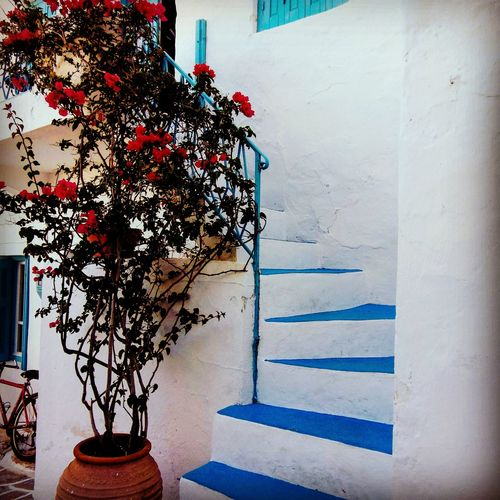 Architecture Built Structure Greece Vacations No People EyeEm Gallery GREECE ♥♥ Travel Destinations Building Exterior Cameraphonephotography Greece Memories MotoZPlay Motoz Moto Z Play Travel Milos Milos Island Milos Greek Island Milos, Greece Milos_island Greece Photos Greecestagram Greece Island Sea Greece Style Greeceisblue