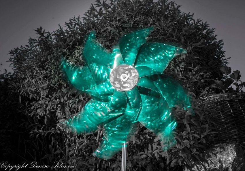 Windmill Coloursplash Colouring  Colourkey ArtWork The Great Outdoors - 2016 EyeEm Awards