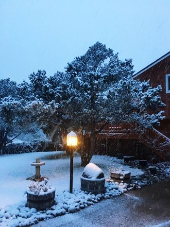 Colorado Snow Snowing Snowscape Peaceful Don't Wanna Shovel