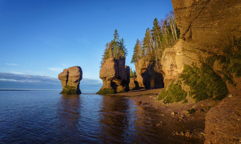 Hopewell Rocks America Bay Of Fundy Blue Sky Canada Daylight Famous Place Golden Hour Hopewell Rocks Hopewell Rocks Park Konifere Low Tide Morning Light Nature New Brunswick, Canada Reflections Rock - Object Rock Formation Sunrise Tranquil Scene Tranquility Travel Travel Destination Trees
