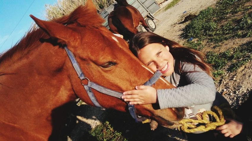 Horse Domestic Animals Only Women Friendship Togetherness Adult Love Outdoors Day Affectionate Brown Embracing Young Adult Women Bonding Adults Only Mammal People Nature