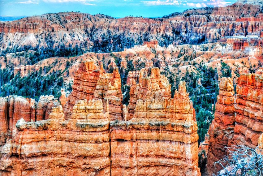 Bryce Canyon national park 😍 Rock - Object Rock Formation Geology Nature Beauty In Nature Travel Destinations Scenics