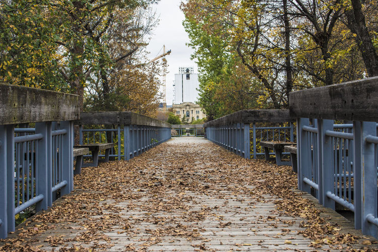 Architecture Autumn Building Exterior Built Structure Change Day Leaf Nature No People Outdoors Railroad Track Sky The Way Forward Tree