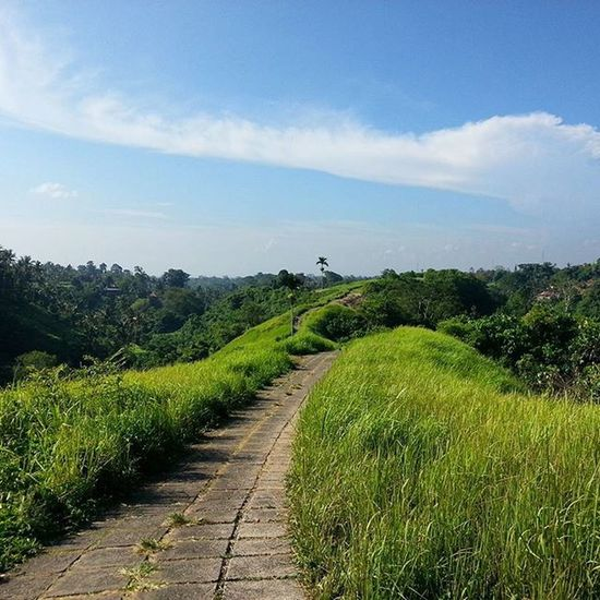 CampuhanRidge Campuhan Ridge Walk Bali