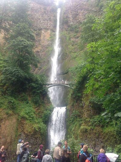 Multnomah Falls  People On Bridge Rock Formation Columbia River Gorge Oregon Beautiful Waterfall Waterfall Trees Bridge