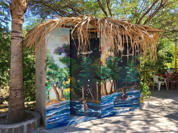 Public toilets! Straw Roof Toilets Toilets Around The World Toilet Art Mensroom Ladies Room Mexico