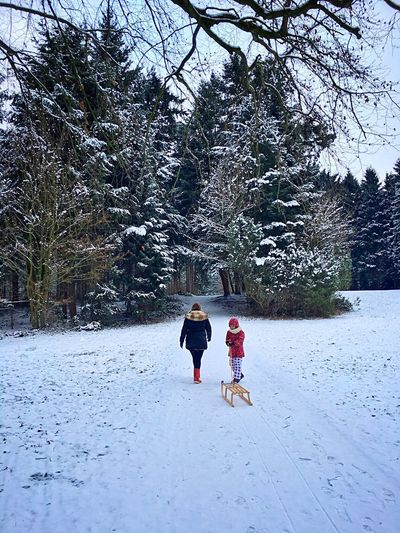 IPS2016Winter Iphonephotography Snow Frozen Trees Winter Winter Wonderland Wintertime Winterfun Bremerhaven Germany🇩🇪 Nature