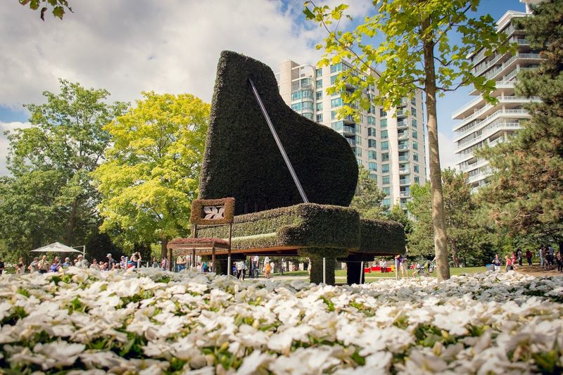 Tree Day Nature Outdoors No People Growth Flower Sky Architecture Beauty In Nature City Piano Ottawa Canada Parc Jacques Cartier